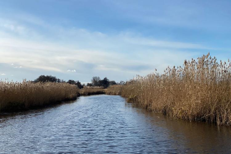 Holiday homeNetherlands - Overijssel: Chaletpark Kroondomein Giethoorn 5  [24]
