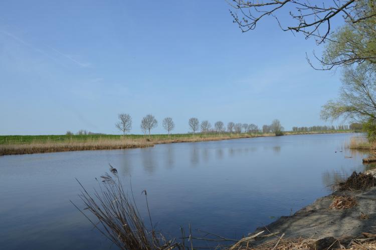 Holiday homeNetherlands - Noord-Brabant: Het Biesbosch huisje  [8]