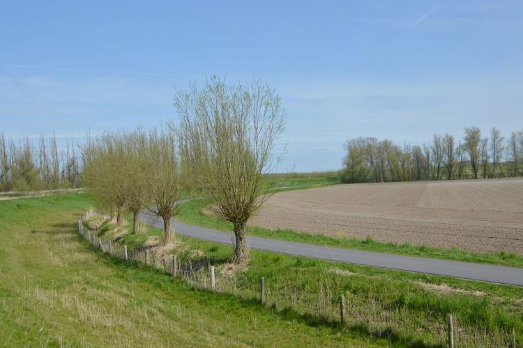 Holiday homeNetherlands - Noord-Brabant: Het Biesbosch huisje  [28]