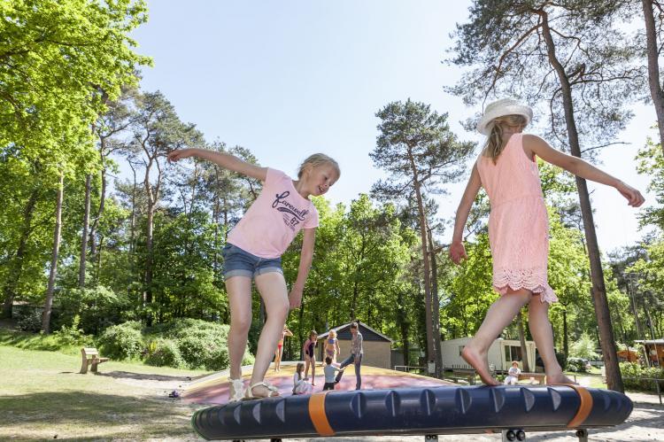 VakantiehuisNederland - Overijssel: Vakantiepark de Vossenburcht 6  [24]