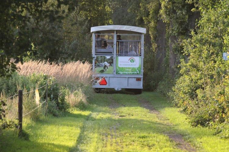 VakantiehuisNederland - Overijssel: Vakantiepark de Vossenburcht 6  [28]