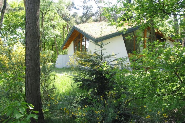 VakantiehuisNederland - Noord-Brabant: Vakantiepark Herperduin 6  [1]