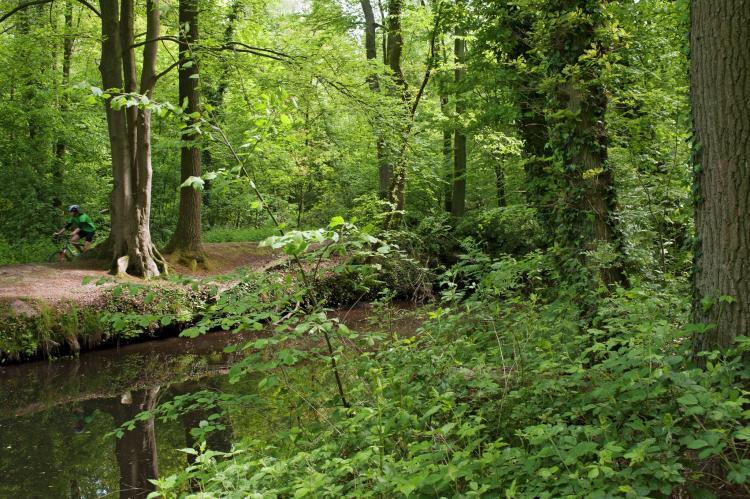 VakantiehuisNederland - Gelderland: Recreatiepark Het Winkel 2  [31]