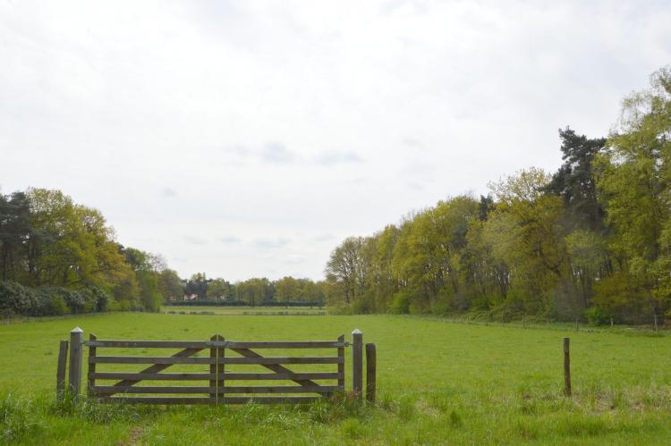 VakantiehuisNederland - Limburg: Bungalows 48 en 49  [29]