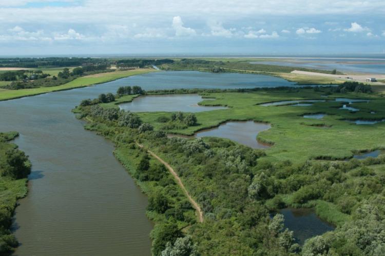 VakantiehuisNederland - Zuid-Holland: Oasis Punt-West Hotel & Beachresort 5  [51]
