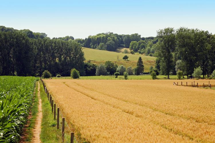 VakantiehuisNederland - Limburg: Hoeve in gunne winkel 1 en 2  [28]