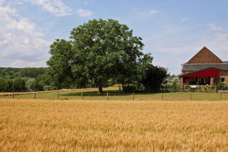 VakantiehuisNederland - Limburg: Hoeve in gunne winkel 1 en 2  [26]