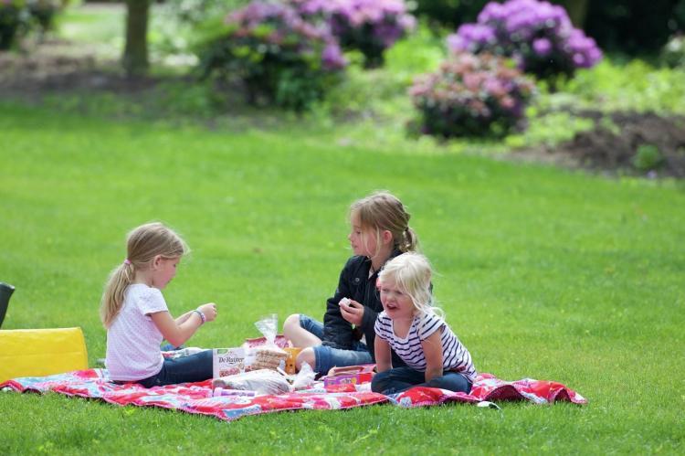 Holiday homeNetherlands - : Vakantiepark Sandberghe 3  [15]