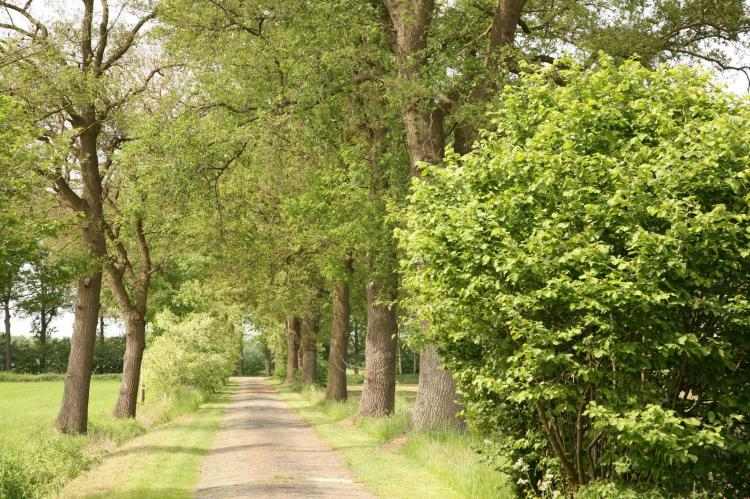 VakantiehuisNederland - Gelderland: 't Achterhoes  [27]