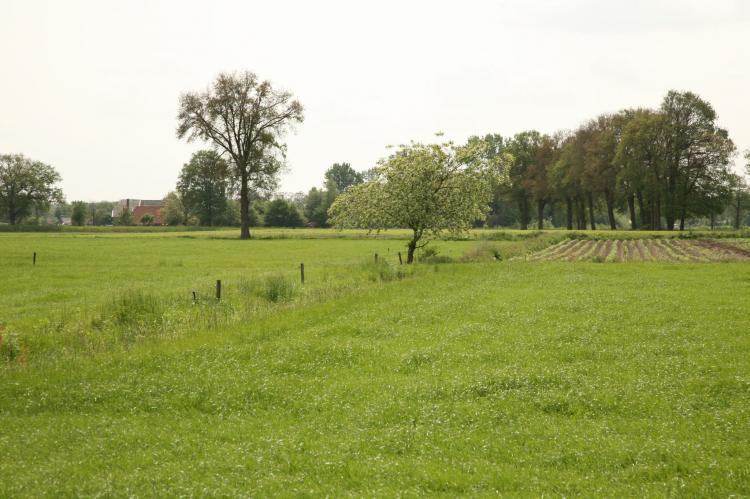 VakantiehuisNederland - Gelderland: 't Achterhoes  [26]