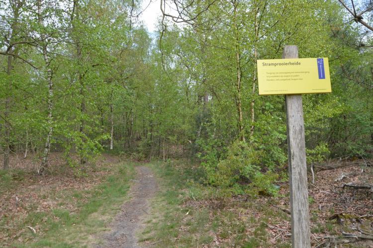 VakantiehuisNederland - Limburg: Het Kleine Landgoed  [39]