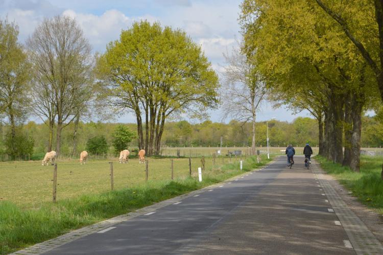 VakantiehuisNederland - Limburg: Het Kleine Landgoed  [40]