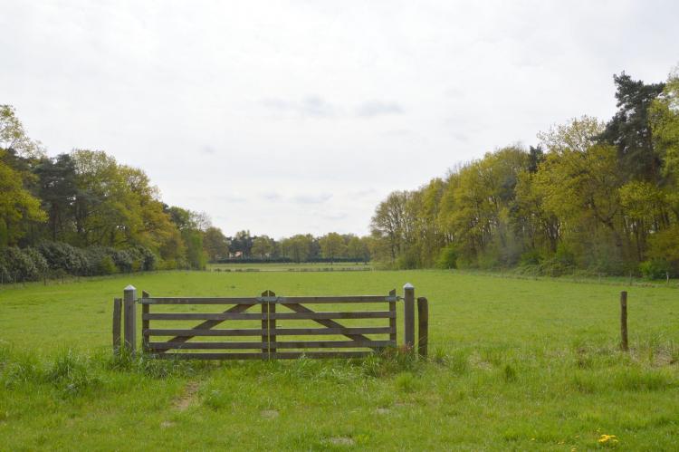 VakantiehuisNederland - Limburg: Het Kleine Landgoed  [38]