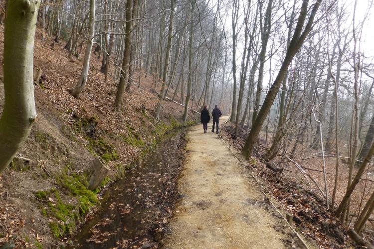 VakantiehuisNederland - Limburg: De Riethorst 2  [20]