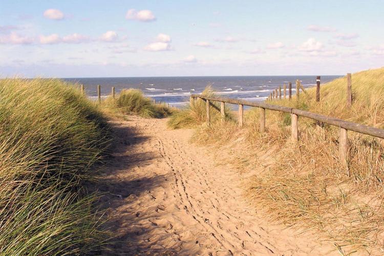 Holiday homeNetherlands - Zuid-Holland: Searose  [23]