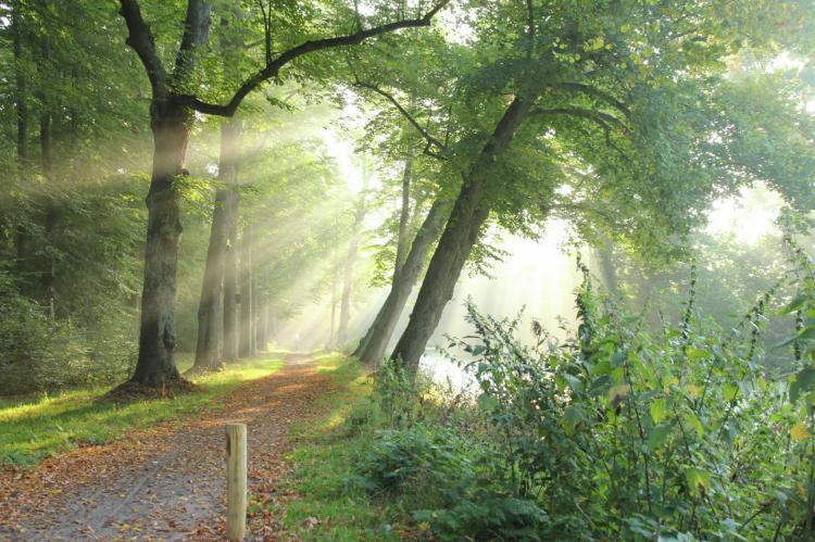 VakantiehuisNederland - Noord-Holland: Het Roefje  [20]