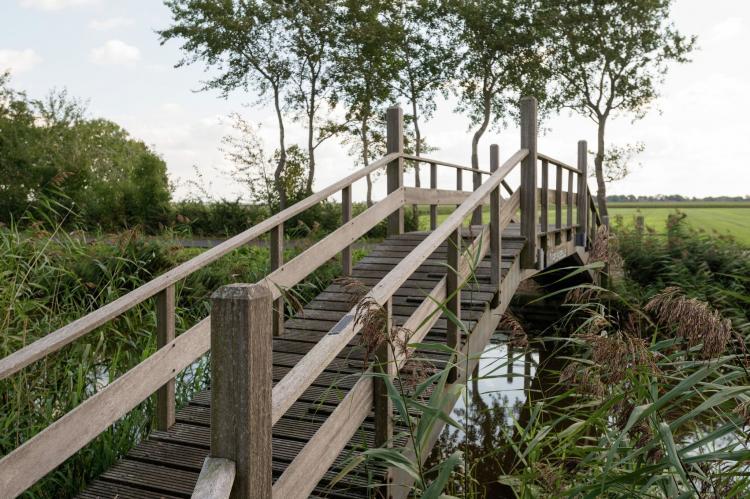 VakantiehuisNederland - Noord-Holland: Harrekidee  [17]