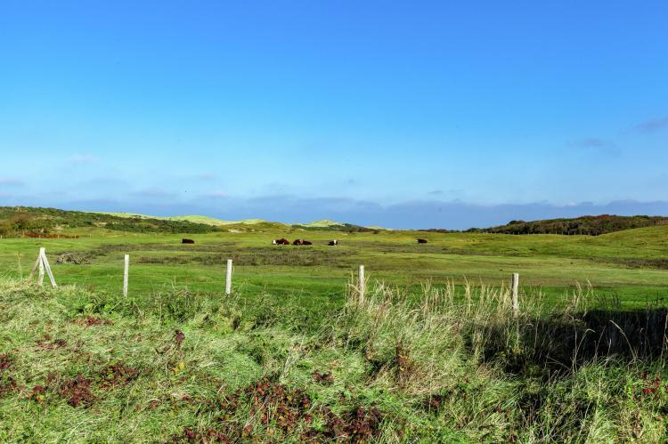 VakantiehuisNederland - Zeeland: Twee Duinen  [25]