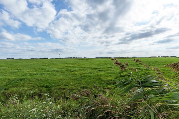 VakantiehuisNederland - Friesland: 't Friese Koetshuis  [27]