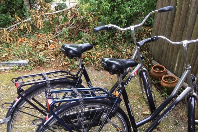 Holiday homeNetherlands - Noord-Holland: Hommel  [19]