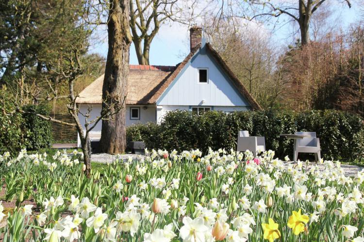 VakantiehuisNederland - Noord-Holland: Romantisch Bergen  [6]