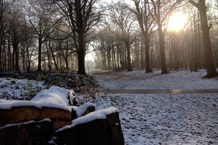 VakantiehuisNederland - Noord-Holland: De Ronde O  [3]