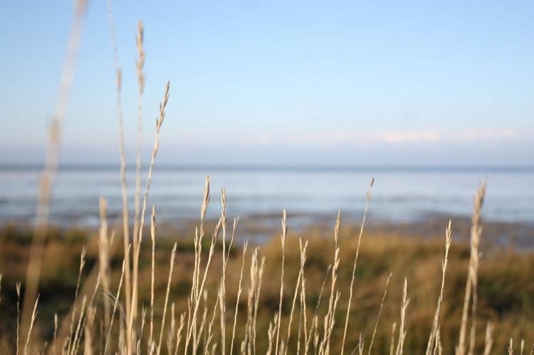VakantiehuisNederland - Friesland: Zeedijk I  [34]