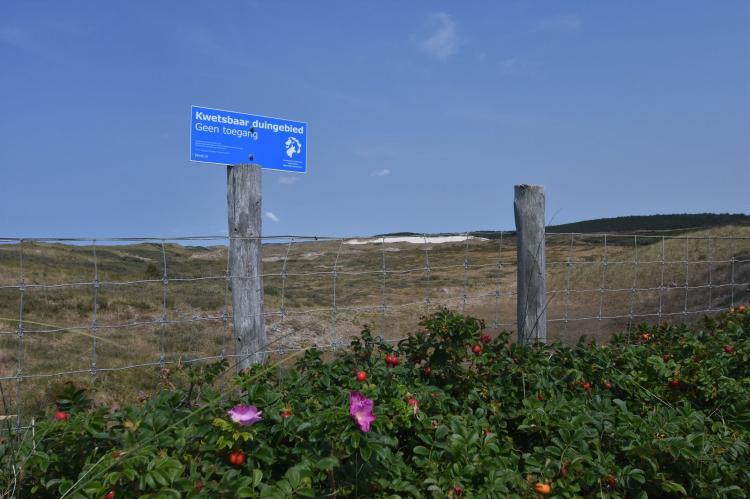 VakantiehuisNederland - Noord-Holland: Huize Glory Parel aan de Duinen  [22]