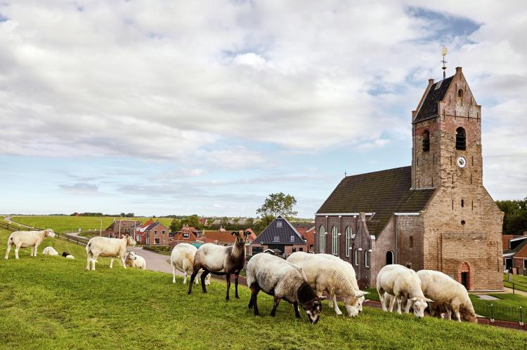VakantiehuisNederland - Friesland: Landhuis Wad Anders  [29]