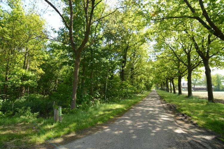 VakantiehuisNederland - Noord-Brabant: De Peelrand Hoeve  [35]