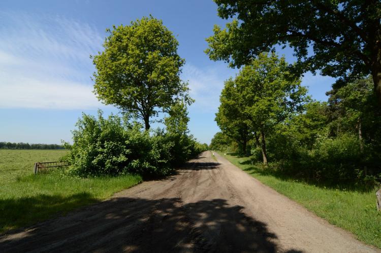 VakantiehuisNederland - Noord-Brabant: De Peelrand Hoeve  [34]