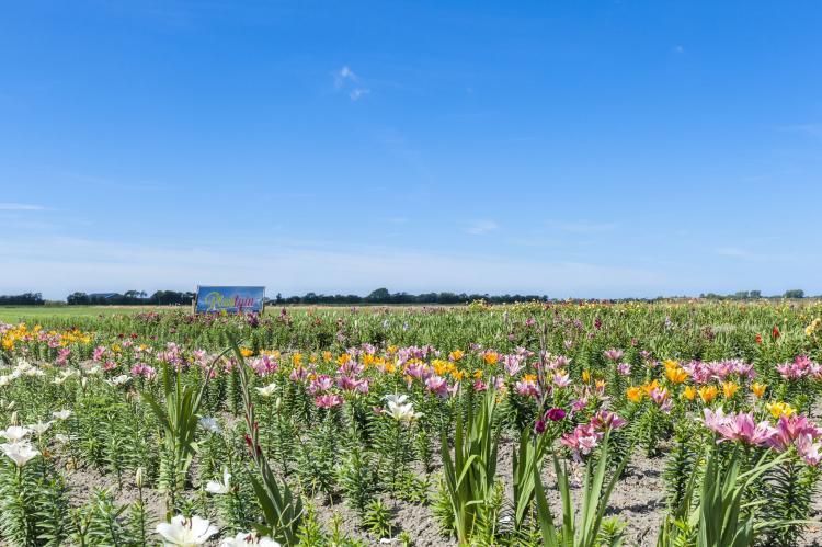 VakantiehuisNederland - Zeeland: Zeeuwse Schaapskooi  [33]