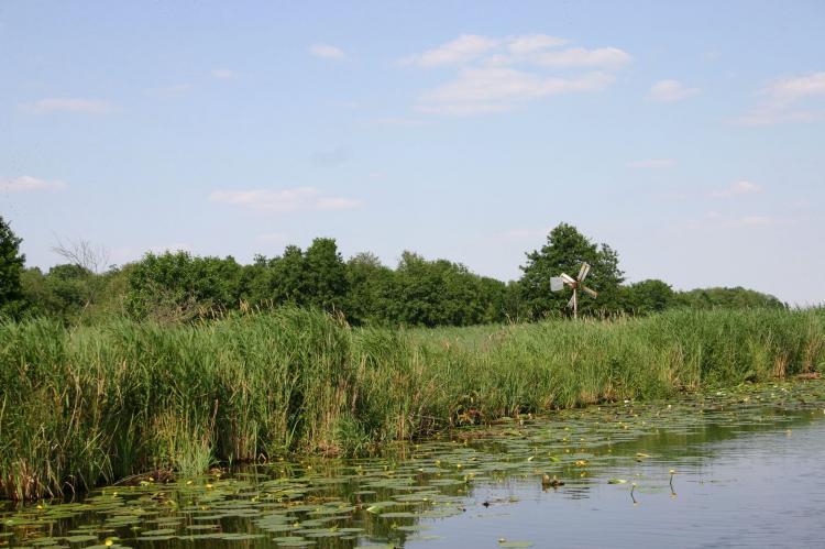 Holiday homeNetherlands - Overijssel: Waterpark Belterwiede 4  [38]