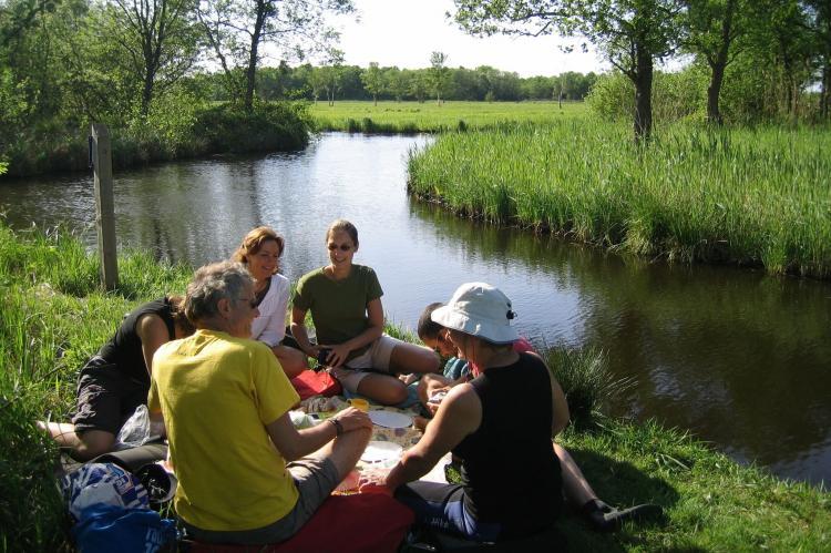 Holiday homeNetherlands - Overijssel: Waterpark Belterwiede 4  [33]