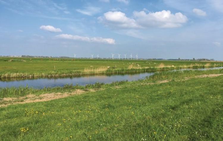 Holiday homeNetherlands - Friesland: Stavoren  [26]