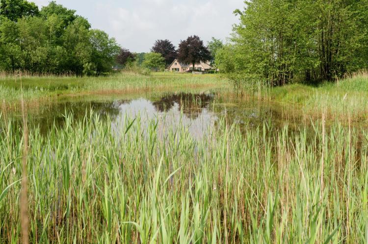 Holiday homeNetherlands - Gelderland: 't Pollenseveld  [25]
