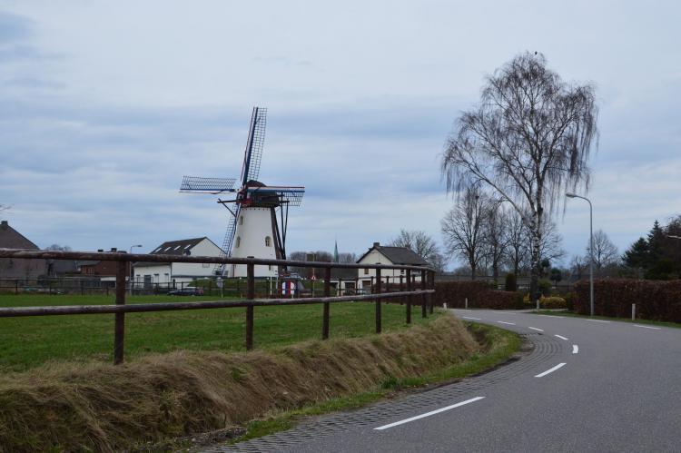 VakantiehuisNederland - Limburg: Bungalow nummer 1  [31]