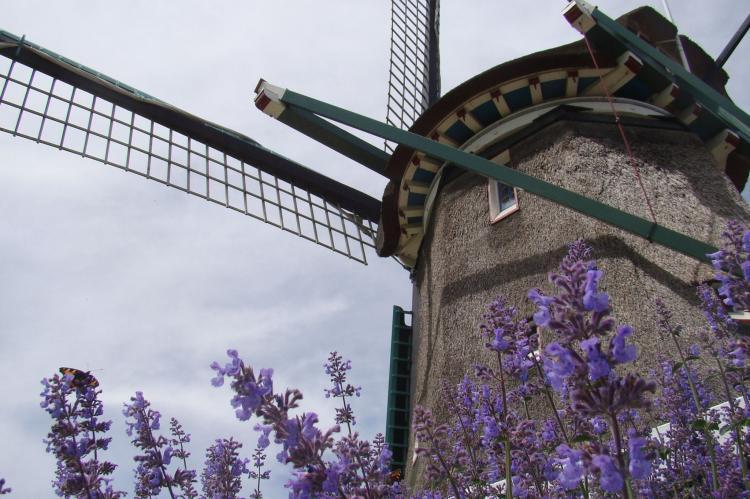 VakantiehuisNederland - Noord-Holland: Onder de Molen 24 pers  [28]