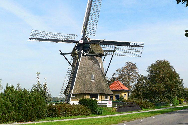 Holiday homeNetherlands - Friesland: 't Haske  [17]