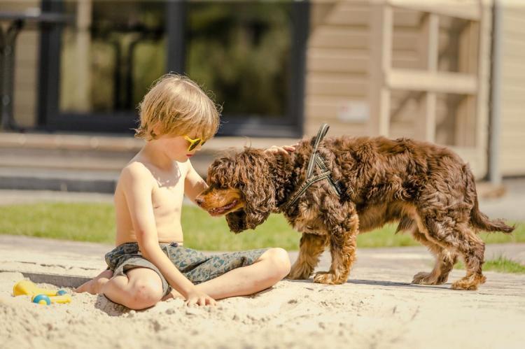 Holiday homeNetherlands - Overijssel: Vakantiepark Mölke 14  [16]