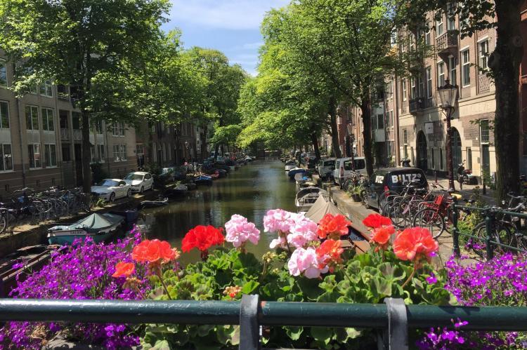 VakantiehuisNederland - Noord-Holland: Appartement Oranje Tulp  [35]