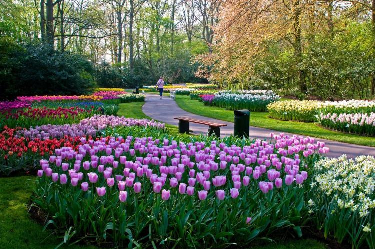 VakantiehuisNederland - Noord-Holland: Appartement Oranje Tulp  [23]