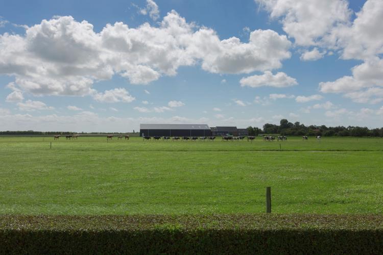 VakantiehuisNederland - Zeeland: De Zeeuwse Schuur - comfort plus 4 personen  [32]