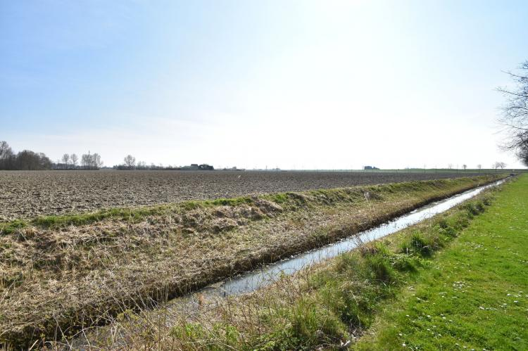 Farmer's View