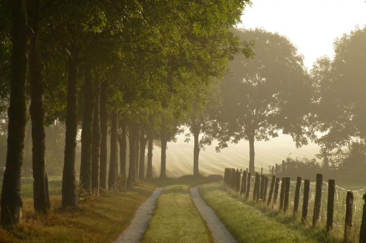 VakantiehuisNederland - Friesland: De Waske  [29]