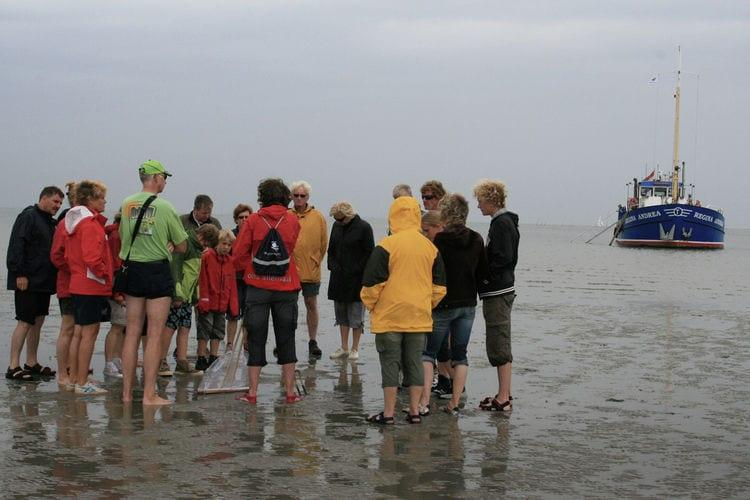 Holiday homeNetherlands - Friesland: De Welstand 40 personen  [28]