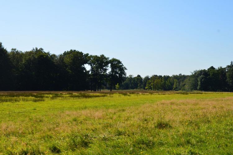 Holiday homeNetherlands - Gelderland: Poort naar de Veluwe  [34]