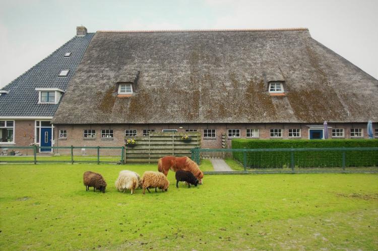 VakantiehuisNederland - Friesland: Het Stolphuis  [4]