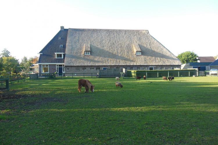 Holiday homeNetherlands - Friesland: Het Melkhuis  [13]