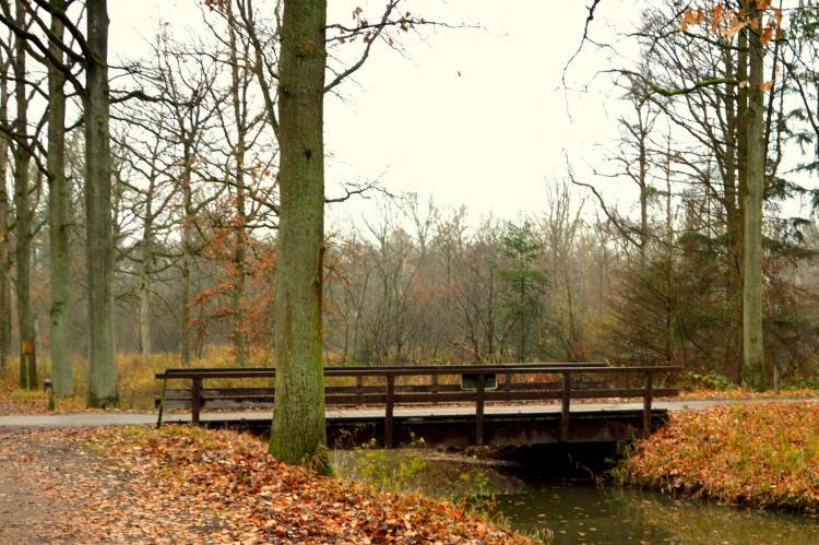 VakantiehuisNederland - Noord-Brabant: Panweg 14  [24]
